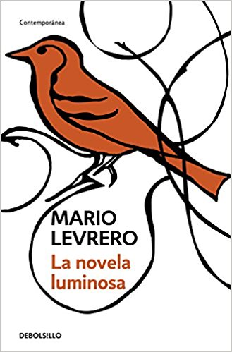 Mario Levrero's The Luminous Novel (Preface)